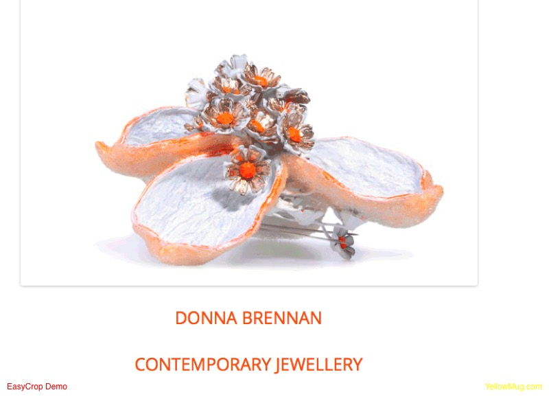 Screenshot of Donna Brennan's webpage