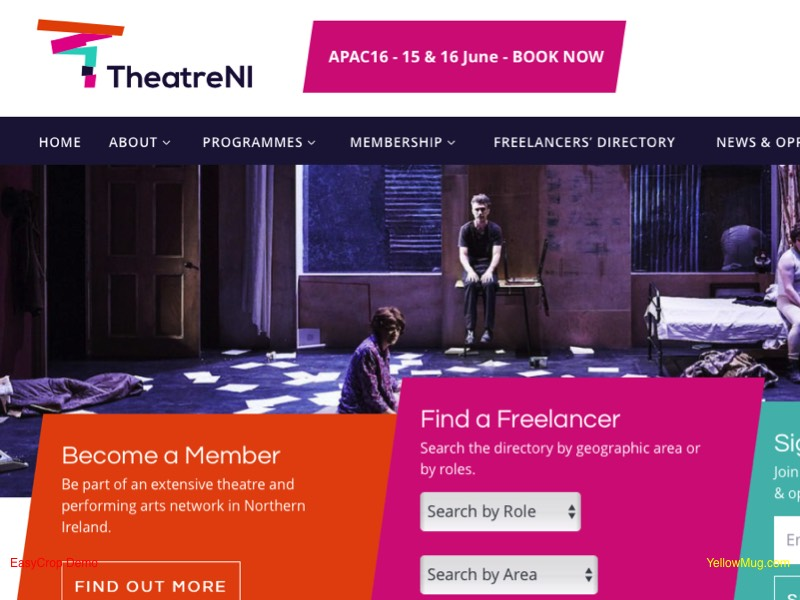 Homepage screenshot for Theatre Northern Ireland