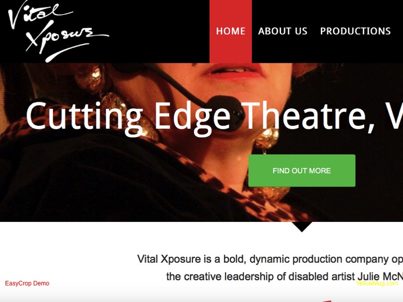 Vital Xposure homepage