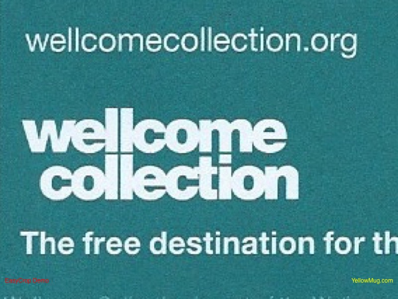 Wellcome Collection logo